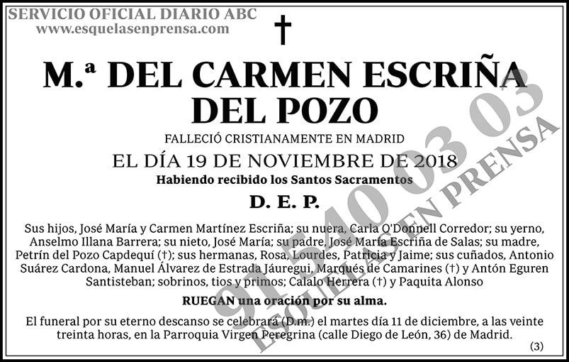 M.ª del Carmen Escriña del Pozo